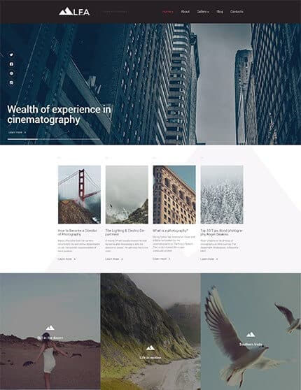 Cinematography WordPress Theme