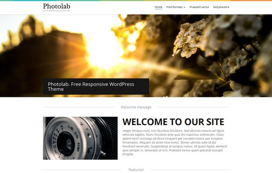 What Makes a WordPress Portfolio Website Great?