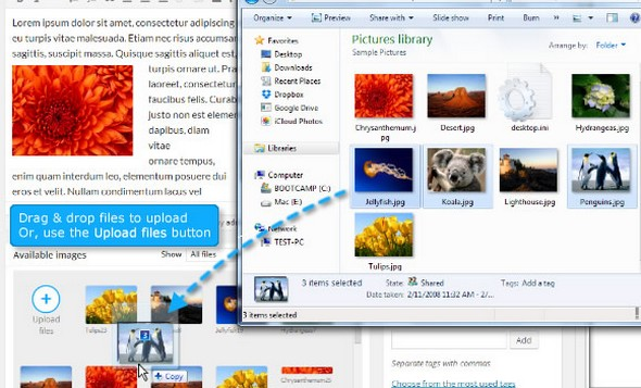 Upload, resize, add, change pictures instantly.