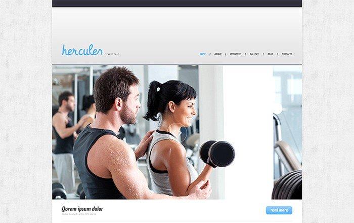 Hercules Responsive WordPress Theme