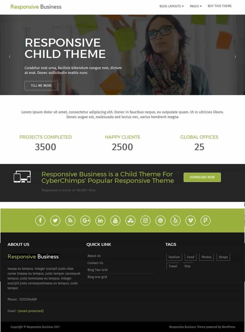 Responsive Business - Professional WordPress theme Demo