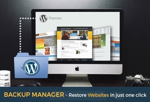 An Ultimate Website Backup Manager WordPress Plugin
