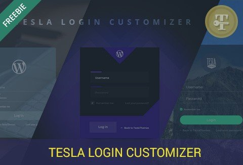 Tesla Login Customizer