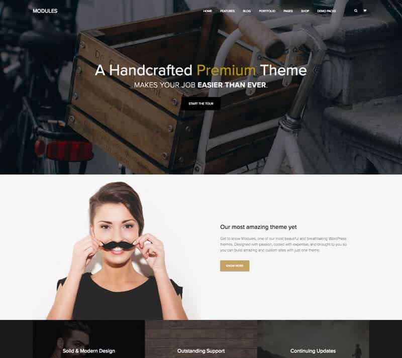 MODULES is one of Artisan Themes most intuitive WordPress themes..