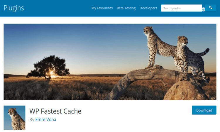 WP Fastest Cache creates static HTML files from your site.