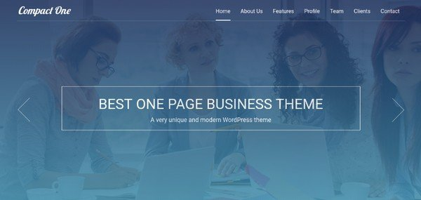 Compact One is a one-page WordPress theme that checks all the right marks.