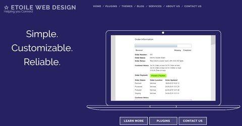 Etoile Web Design WordPress Plugins