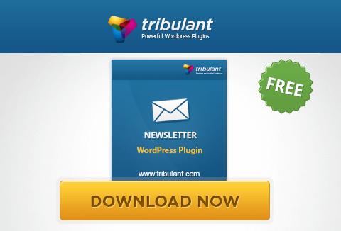 WordPress Newsletter Plugin- Lite