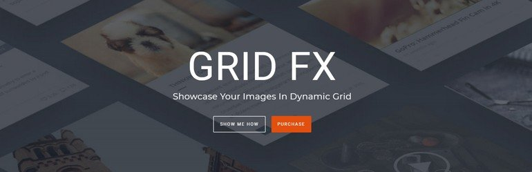 Grid FX offers incredible customization with 80 unique styling options
