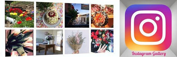 With Instagram Gallery, you can publicize Instagram photos on your website.