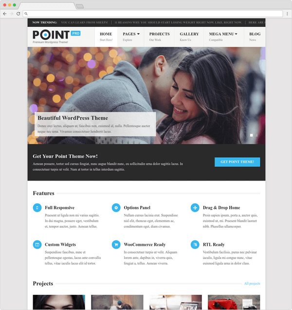Point Pro is a very popular WordPress theme with a ton of premium features..