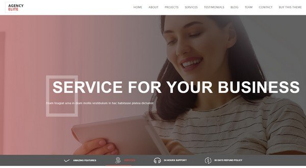 Agency Elite is a WordPress theme with a professional layout and smooth scrolling.