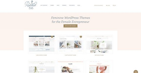 Restored 316 WordPress Themes