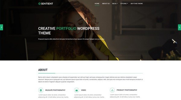 Sentient is an elegant WordPress theme perfect to showcasing your portfolio.