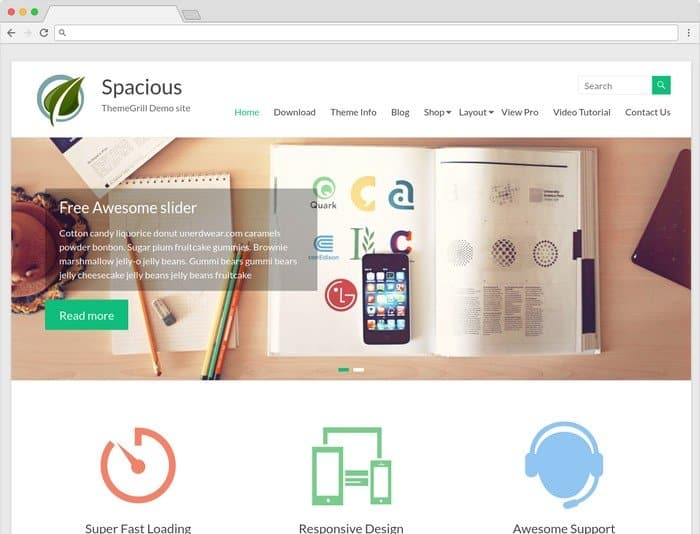 Spacious is a WordPress theme that is perfect for any business website.