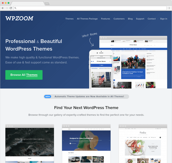 WP Zoom is another of the top WordPress premium theme providers.
