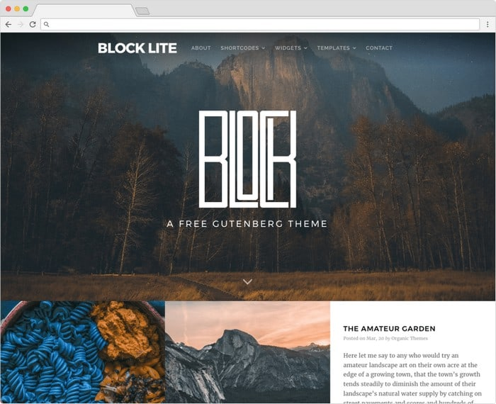 Block Lite is a free Gutenberg theme with a attractive design.