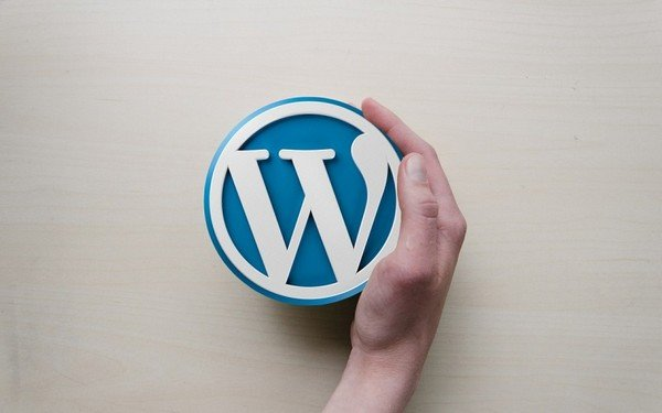 Benefits That Make WordPress an Ideal Choice for Startups - WordPress is open source and it is free.