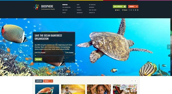 Biosphere is another excellent non-profit WP theme created by WPlook.