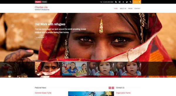 Charitas Lite is a free nonprofit WP theme from WPlook