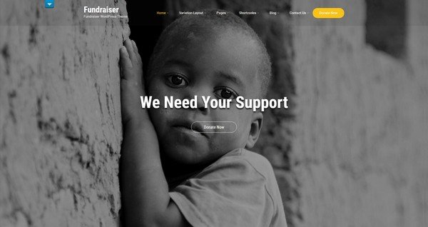 Fundraiser is a premium charity WordPress theme from SKT Theme.
