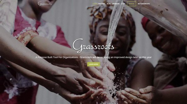 Grassroots is a nonprofit WordPress theme from Organized Themes.
