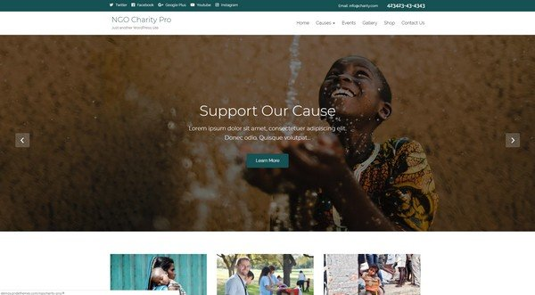 NGO Charity Lite is a free WordPress theme for non-profit organizations.