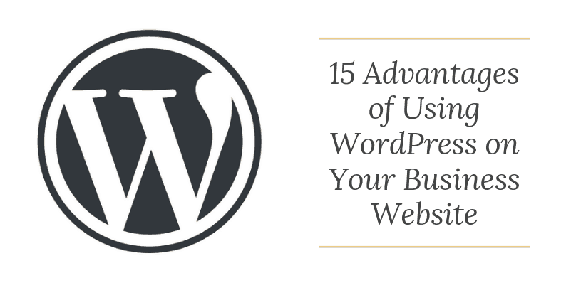 Using WordPress on Your Business Website