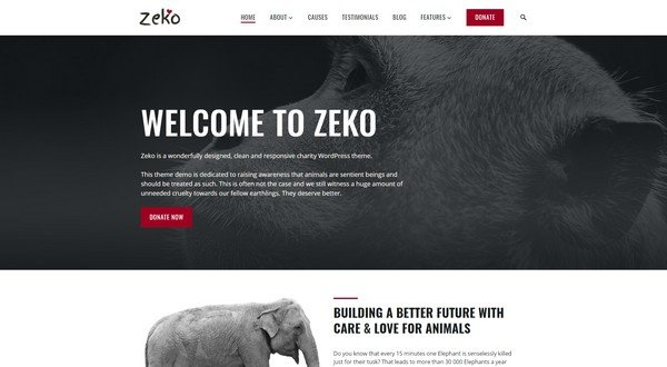 Zeko is great charity WordPress theme from Anariel Design.