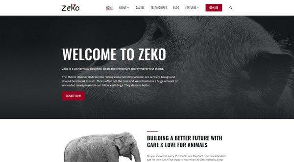Zeko is great charity WordPress theme from Anariel Design.