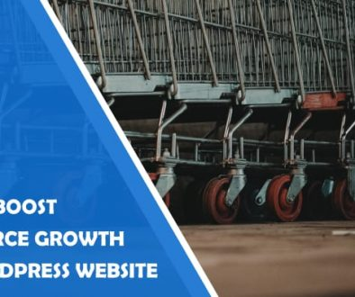 How to boost growth of your ecommerce wordpress site