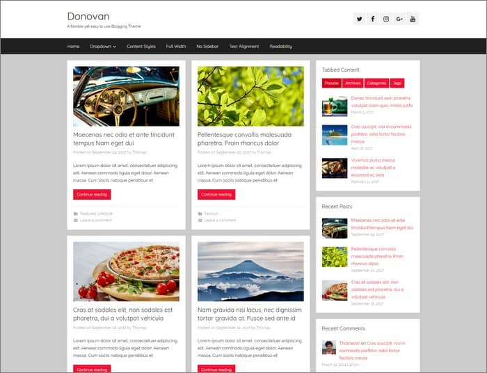 ThemeZee Q1. Donovan is a flexible yet easy to use blogging theme with a clean and modern design
