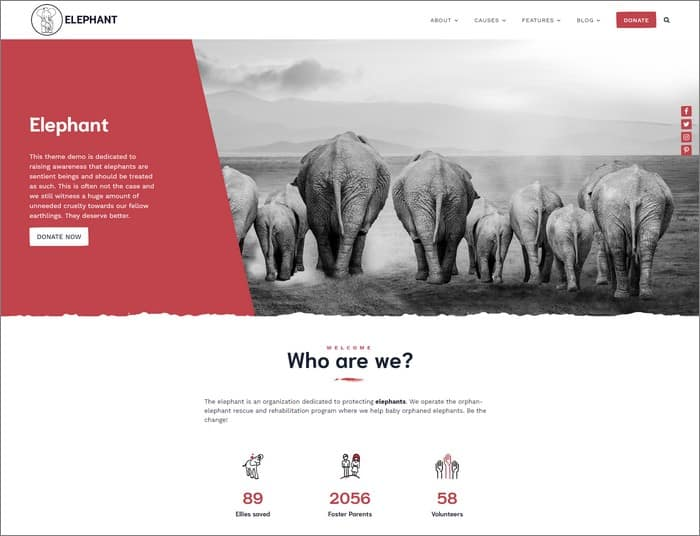 Elephant is a popular theme on Anariel Design.