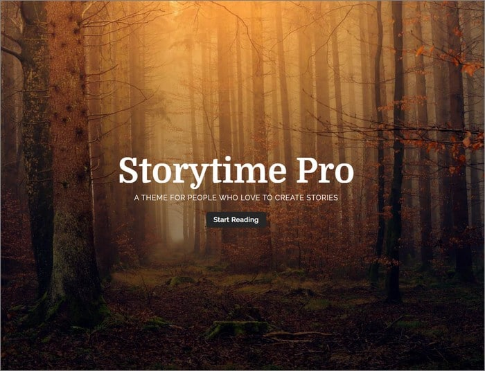 Storytime Pro is the best-selling theme from Rough Pixels.