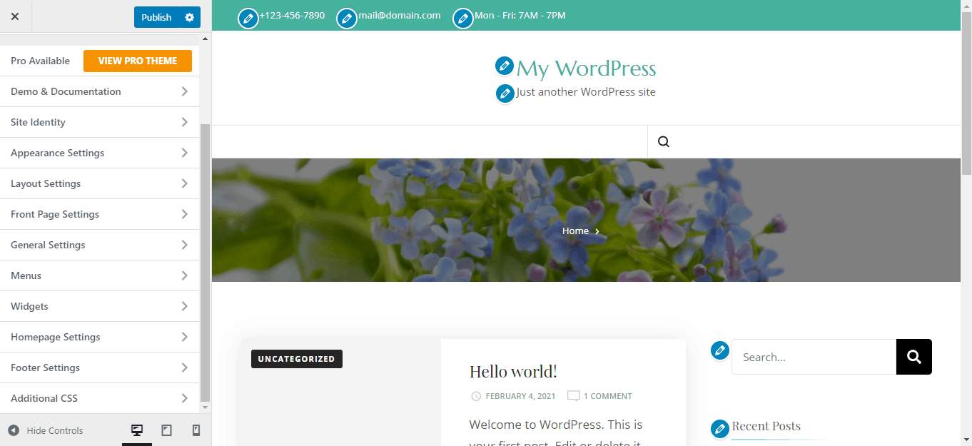 WordPress appearance customize page