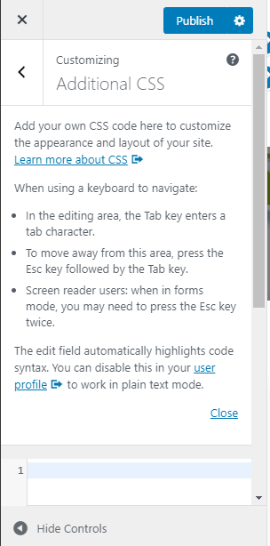WordPress customizing additional CSS