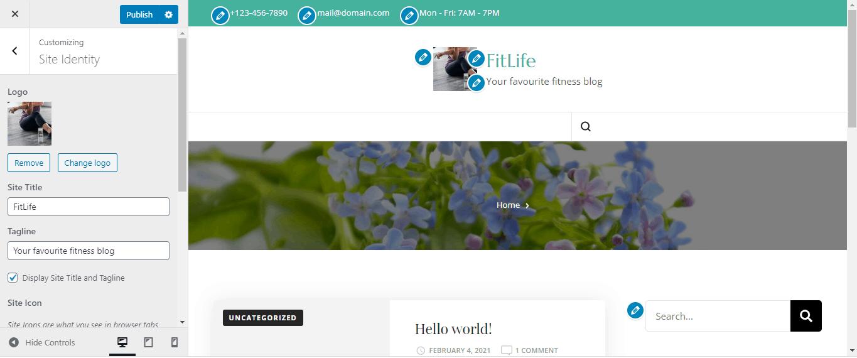 WordPress customizing site identity option